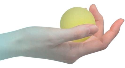 Image of   Antistressbolde til hænderne